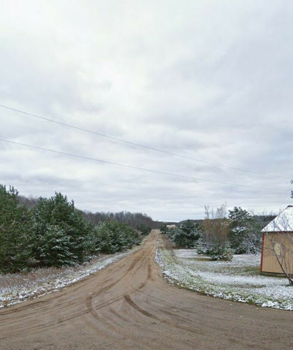 0.5 ACRES IN MICHIGAN! BEAUTIFUL PINE TREE LOT WITH POWER & UTILITIES!