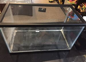 10g glass cage (firm price)