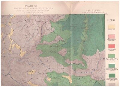 Sonora region California 1891 Color Map Timber