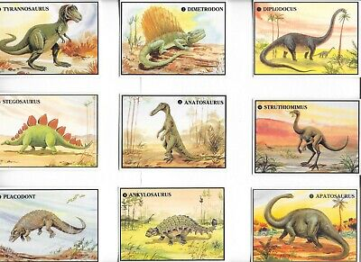 DINOSAURS COMPLETE SET OF 20 FACT CARDS VERY RARE! 1987 DINOSAUR ARTWORK NICE!