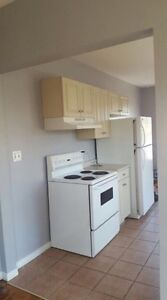 Renovated 2 bedroom the heart of uptown Ottawa Windsor Region Ontario image 1