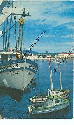 CALIFORNIA, SANTA CRUZ FISHING BOATS CATHERINA G VINTAGE (CA-S*)