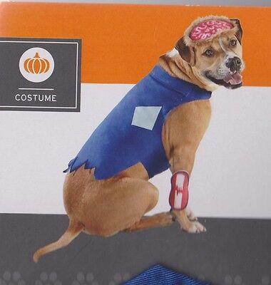 Zombie Haustier Kostüm Hund Klein Mittel Groß XL - Großer Hund Kleiner Hund Kostüme