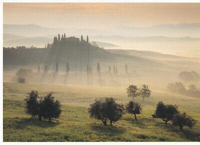 Ansichtskarte: Morgenstimmung in der Toskana, Italien - Morning dew, Toscana