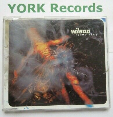 WILSON - Josmo King - Excellent Condition CD Single Non-Fiction YESCD13