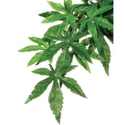 Exo Terra Seidenpflanze small - Regenwaldpflanze ABUTILON  für Terrarium  PT3032