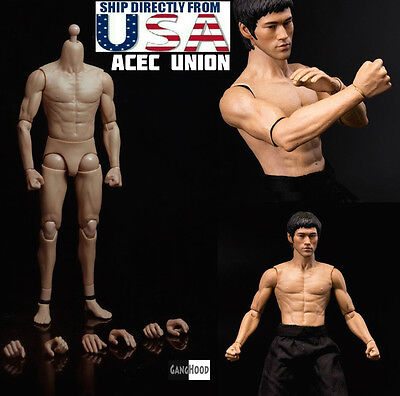 1 6 Muscular Male Figure Body Ganghood 2 0 For Bruce Lee As Hot Toys Dx04 Usa