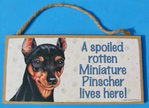 """EUC 10"""" x 5"""" Sign Spoiled Rotten Miniature Pinscher Lives Here! MinPin Dog USA"""