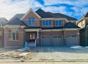 Brand new executive house for lease 5 bed 5 bath