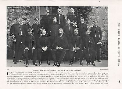 1900 ANTIQUE PRINT-BOER WAR- OFFICERS AND NCOs OF THE ROYAL DRAGOONS