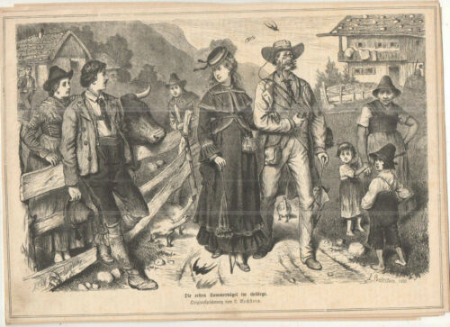 BECHSTEIN L. - Sommervoegel im Gebirge -- alter Druck - Holzschnitt - 1873