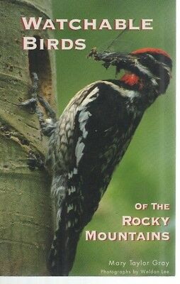 Watchable Birds of the Rocky Mountains-Wildlife-Identification-Birdwatcher