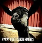 Wacky Goat Consignments