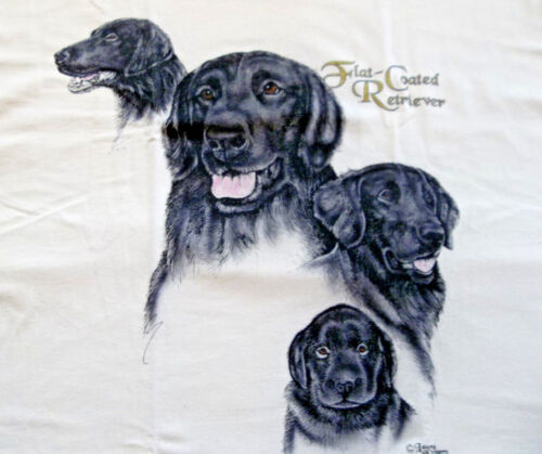 "Flat-Coated Retriever T-shirt  "" Natural "" XL ( 46 ~ 48 )"