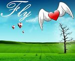 flyingwithmyheart