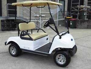 Golf Cart 2018 Ford ex rental fleet Golf Carts $4990 each