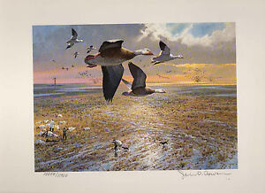TEXAS #5 1985 STATE  DUCK STAMP PRINT SNOW GEESE by John Cowan