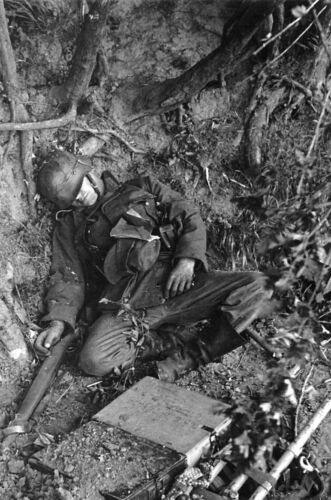 WW2 WWII Photo German Soldier Casualty D-Day Normandy France World War Two /1286