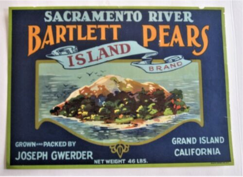 Island Brand Pear Fruit Crate Label, original 1930s