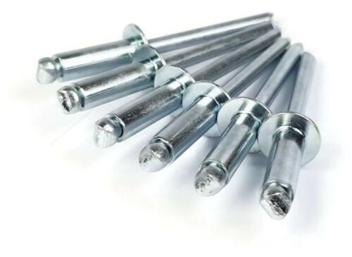Steel Pop Rivets 3/16 Diameter #6 Zinc Plated Steel Blind Rivets - Select Grip