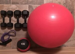 Instant Home Gym - Dumbbell Weights + Exercise Balls