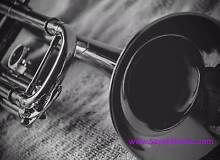 Great value used SUZUKI MUSIQUE Master Class Bb Trumpet Burwood Whitehorse Area Preview