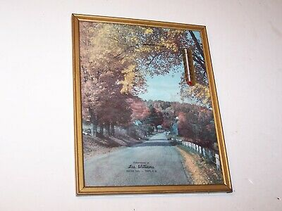 Vintage advertising thermometer in picture frame Les Williams Tripp S.D. SD