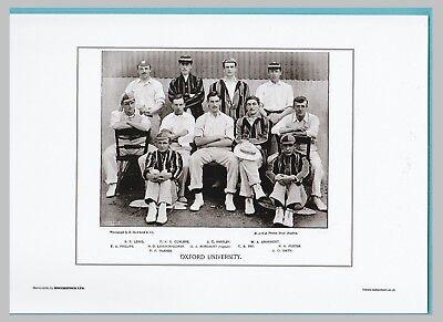 CRICKET  -  UNMOUNTED CRICKET TEAM PRINT - OXFORD UNIVERSITY - 1895