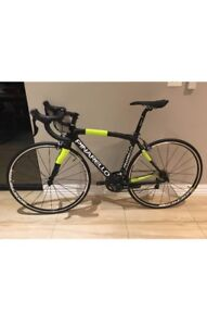 Pinarello - Ultegra 11sp - Size 48cm CF - 51.8 Top Tube Carbon Bike