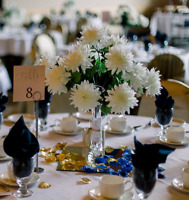 REDUCED: White Silk Flower Wedding Centrepieces with Glass Vases