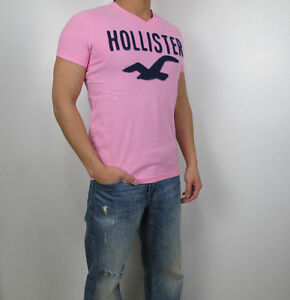 NWT HOLLISTER By Abercrombi​e Men Dixon Lake Classic Tamarack V Neck T Shirt Tee