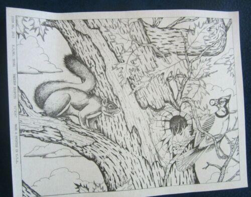 "Tri-chem Artex Squirrel & Bluejay in Oak Tree "" Treetop Dispute"" Picture 11""X14"""