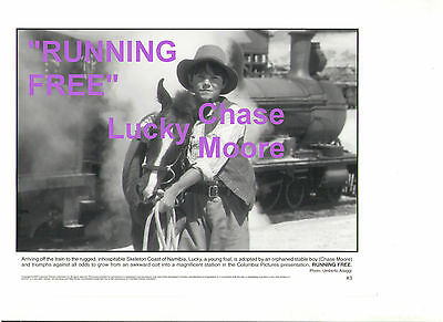 RUNNING FREE CHASE MOORE LUCKY FOAL SKELETON NAMIBIA ORIGINAL 8x10 PRESS PHOTO