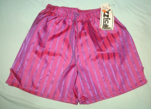 VTG 80s FIZZICAL SHORTS LARGE PURPLE STRIPED USA GYM RUNNING 90s SOCCER SATIN