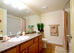 Renovated 2 Bedroom Available - Call (306) 314-5853