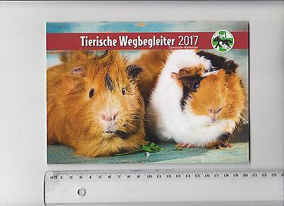 Hund Welpe Katze Pferd Hase Hamster TIERE HEIMTIERE -Kalender- Rahmung ? Poster? (Hund Kalender)