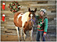 Gift Certificates Available Horseback Riding Instruction