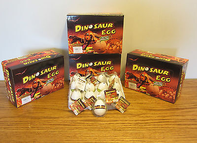 5 NEW GROWING PET DINOSAUR EGGS GROW DINO HATCHING HATCH EGG