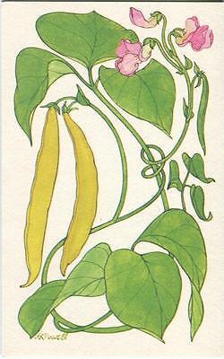 VINTAGE YELLOW WAX STRING BEANS RECIPE PRINT 1 KITCHEN EGGS FLOWERS TEA POT CARD (Flower Pot Recipe)