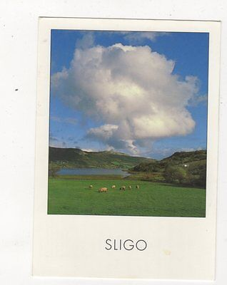 Sligo Ox Mountains Ireland 1995 Postcard 879a