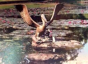 "Life size sculpture, copper & silver, ""Pelican Landing on Water"" Murwillumbah Tweed Heads Area Preview"