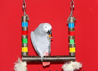 Papageienspielzeug Freisitz SCHAUKEL für Papageien Sittiche Naturholz **NEU**