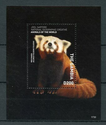 Gambia 2017 MNH Wild Animals of World Red Panda 1v S/S Pandas Stamps