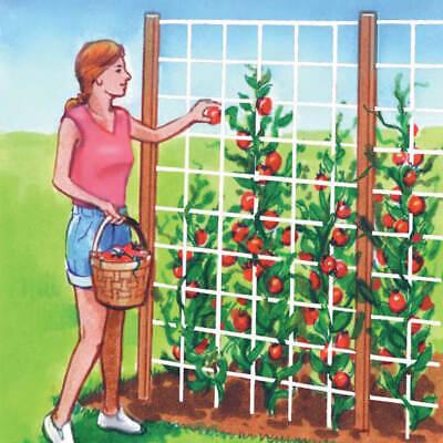 Flexible Resistente Nylon Jardín Enrejado Malla