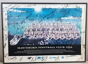 1994 Hawthorn AFL Football Club Photo with Signatures