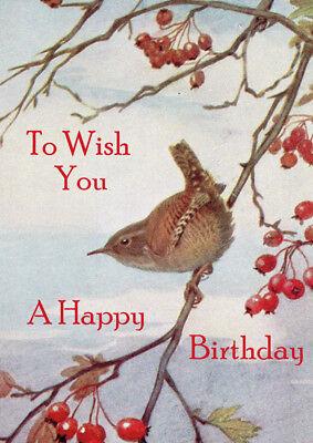 "HAPPY BIRTHDAY GREETINGS CARD BEAUTIFUL BIRD  "" JENNY WREN """
