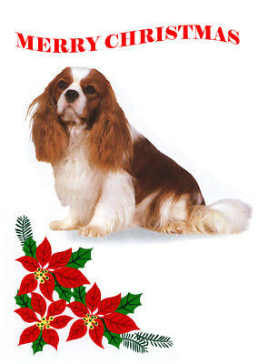 CAVALIER KING CHARLES SPANIEL SINGLE DOG PRINT GREETING CHRISTMAS CARD