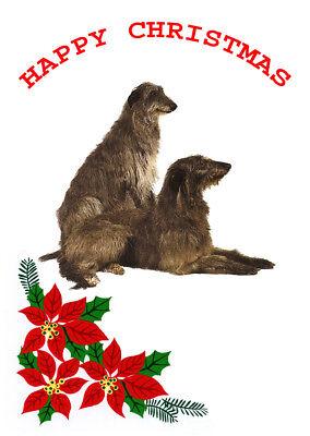 DEERHOUND TWO DOGS SINGLE DOG PRINT GREETING CHRISTMAS CARD