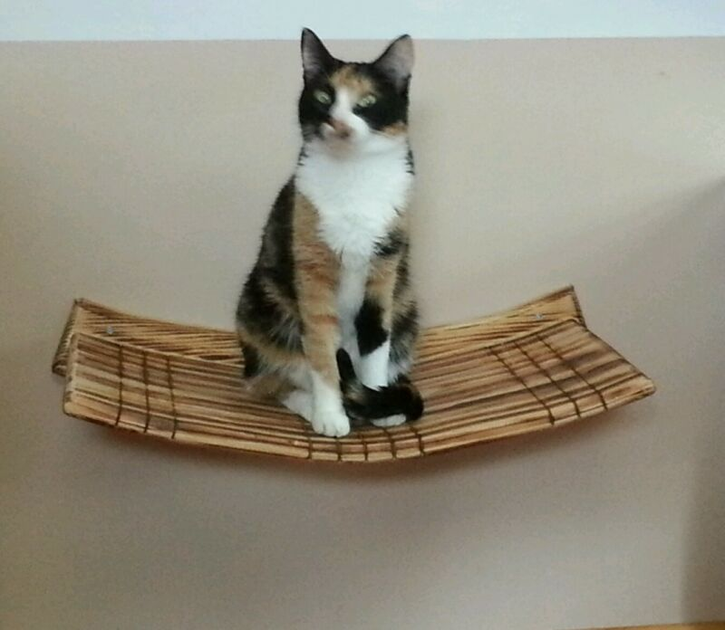 Wall Mounted Large Curvy Cat Perch