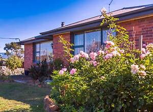 Commuters Dream ! Unique, Affordable, Home on 6070 sqm Land. Cressy Northern Midlands Preview
